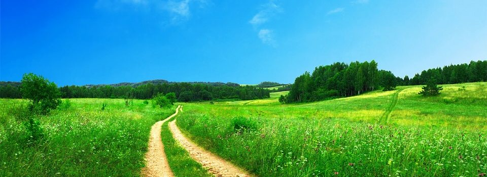 A footpath in the countryside.